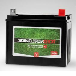 Sealed U1 Battery with NB terminal Riding Lawn Mower Garden